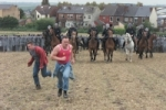 Orgreave: an injury to one is an injury to all