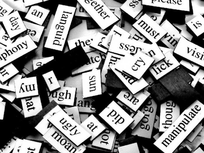 Plagiarism And The Privatisation Of Poetry