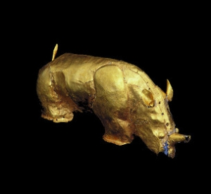 13C Gold Rhino, hidden by the racist apartheid regime of South Africa because it contradicted their ideology of an empty land